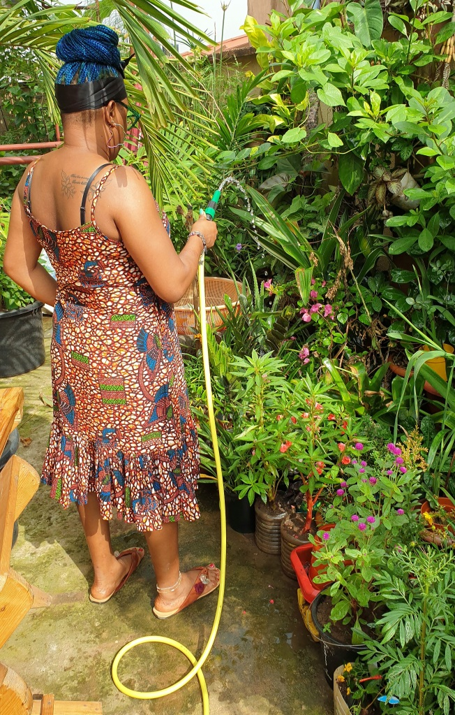 Watering a garden with hose